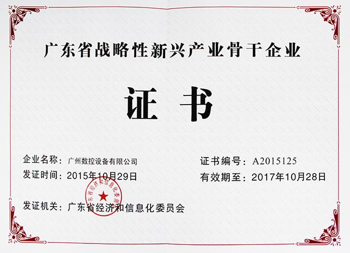 广东省战略新兴骨干企业